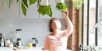 家里的小盆栽这样种才够逼格!