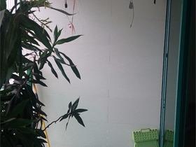 美式阳台吊顶实景图