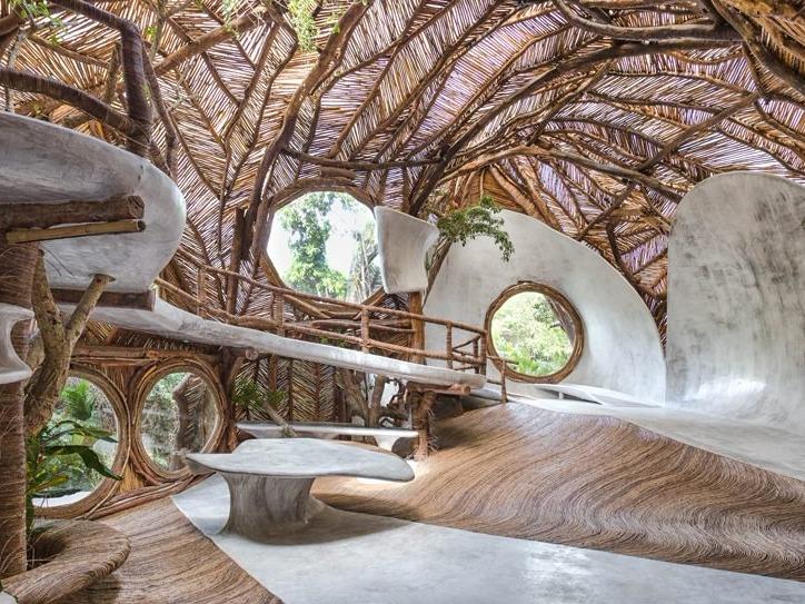 peggy guggenheim之孙打造奇趣树屋型博物馆